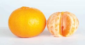 ellendale-mandarins