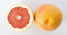 lemon8