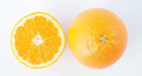 navel-orangers