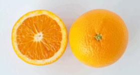 valencia-oranges