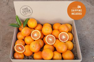 Blood Oranges 5kg FHD