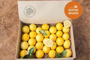 Eureka Lemons 5kg FHD