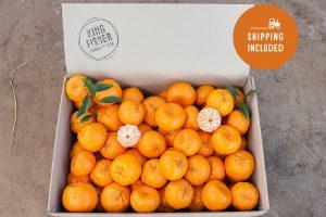 Imperial Mandarins 10kg FHD