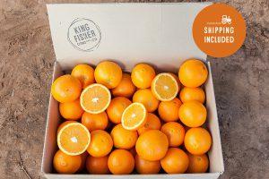 Premium Navel Oranges 10kg FHD
